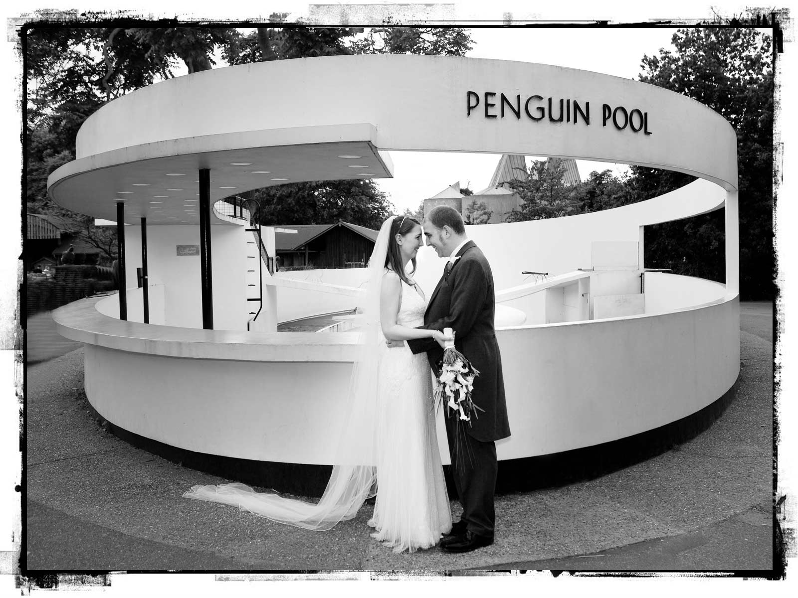 London Zoo wedding photographer banner image