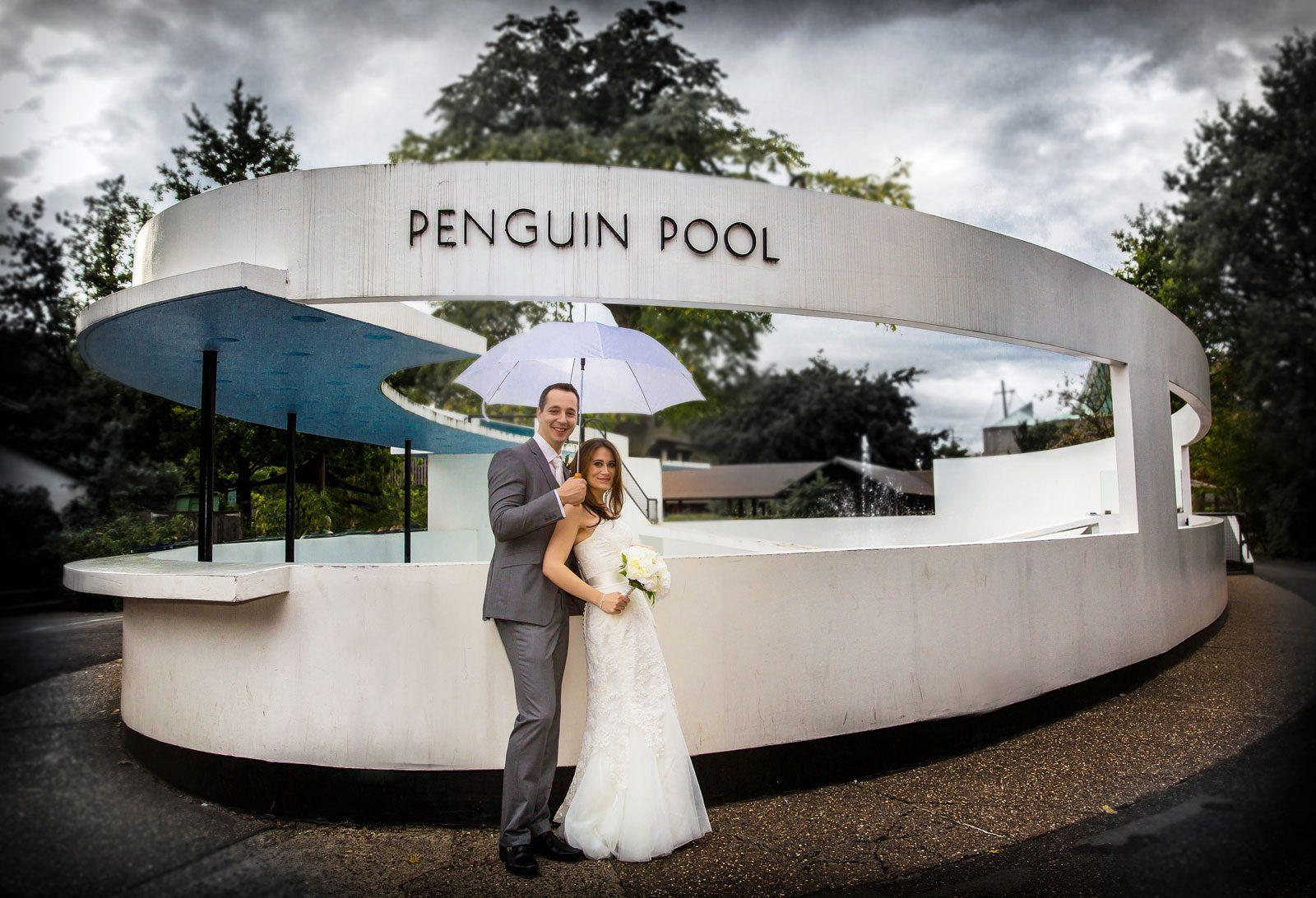 London Zoo wedding shot