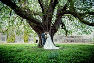 man and wife kiss under tree at Fanhams Hall wedding