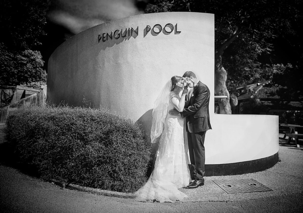 Wedding couple hide behind flowers at London Zoo Penguin Pool