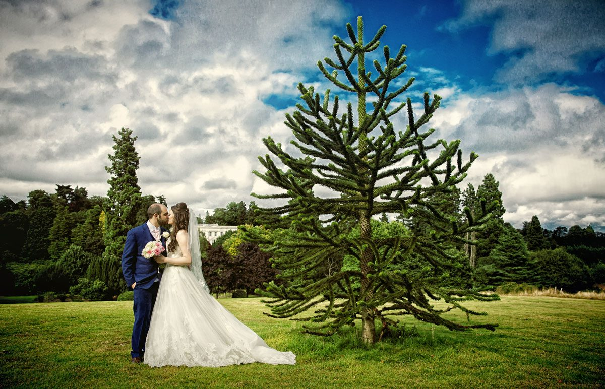 Wedding couple kiss by tree at Northcote House