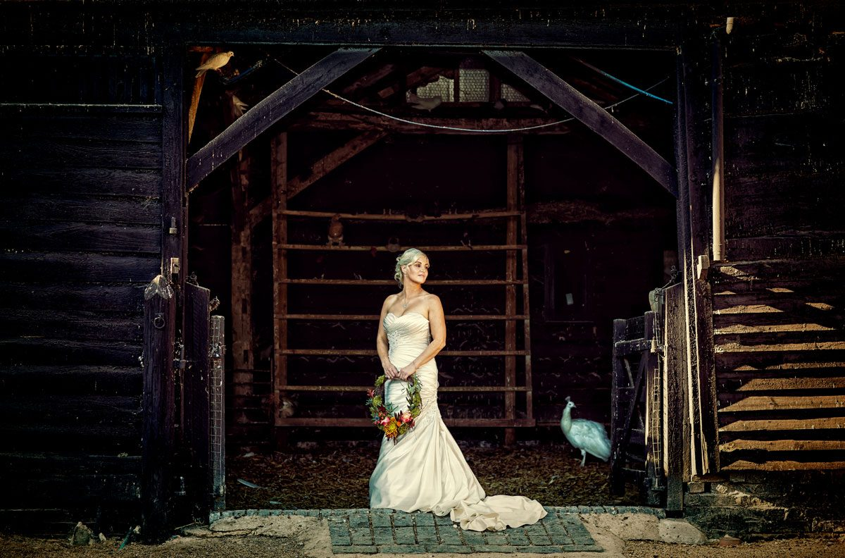 Bride in a barn at her South Farm wedding photo